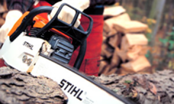 CroppedImage350210-Stihl-Profesional-Chainsaw.png